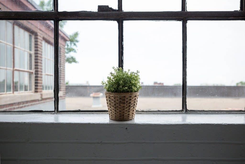חלון האם צריך לנקות דירה שלא גרים בה